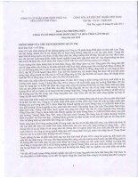 Báo cáo thường niên năm 2013 - Công ty cổ phần Supe Phốt phát và Hóa chất Lâm Thao