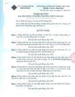 Nghị quyết Hội đồng Quản trị - Công ty Cổ phần Đầu tư Xây dựng Hồng Phát