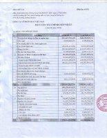 Báo cáo tài chính quý 3 năm 2009 - Công ty Cổ phần Đầu tư và Xây dựng BDC Việt Nam
