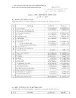 Báo cáo tài chính quý 4 năm 2009 - Công ty Cổ phần Chế biến Thủy sản Xuất khẩu Ngô Quyền
