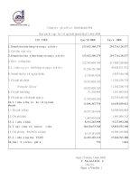 Báo cáo tài chính quý 2 năm 2008 - Công ty Cổ phần Đầu tư - Kinh doanh nhà