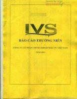 Báo cáo thường niên năm 2012 - Công ty cổ phần Chứng khoán Đầu tư Việt Nam
