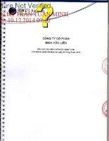 Báo cáo tài chính năm 2014 (đã kiểm toán) - Công ty Cổ phần Minh Hữu Liên
