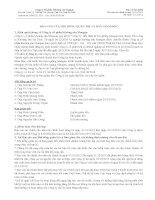 Báo cáo tài chính năm 2012 (đã kiểm toán) - Công ty Cổ phần Khoáng sản Mangan