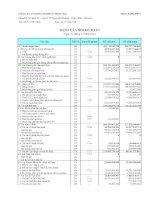 Báo cáo tài chính hợp nhất quý 4 năm 2010 - Công ty Cổ phần Someco Sông Đà