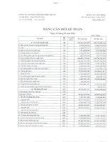 Báo cáo tài chính quý 1 năm 2015 - Công ty cổ phần Kim khí miền Trung