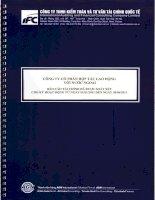 Báo cáo tài chính quý 2 năm 2011 (đã soát xét) - Công ty Cổ phần Hợp tác Lao động với Nước ngoài