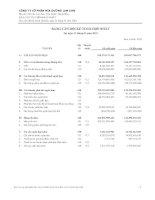 Báo cáo tài chính hợp nhất quý 1 năm 2010 - Công ty Cổ phần Mía đường Lam Sơn