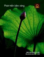Báo cáo thường niên năm 2012 - Công ty Cổ phần Tập đoàn Hoa Sen