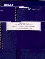 Báo cáo tài chính quý 1 năm 2010 - Tổng Công ty Đầu tư Phát triển Nhà và Đô thị Nam Hà Nội