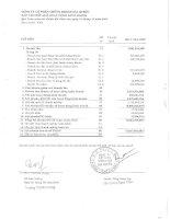 Báo cáo tài chính quý 1 năm 2009 - Công ty Cổ phần Chứng khoán KIS Việt Nam