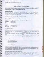 Báo cáo tài chính năm 2010 (đã kiểm toán) - Công ty cổ phần Chứng khoán Đầu tư Việt Nam