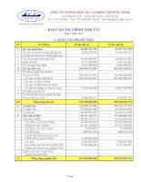 Báo cáo tài chính quý 1 năm 2010 - Công ty Cổ phần Hợp tác Lao động với Nước ngoài