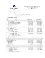 Báo cáo tài chính quý 2 năm 2009 - Công ty cổ phần Đầu tư và Phát triển Đô thị Long Giang