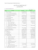 Báo cáo tài chính quý 3 năm 2009 - Công ty Cổ phần Someco Sông Đà