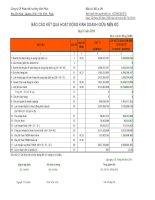 Báo cáo tài chính quý 3 năm 2010 - Công ty Cổ phần Phát triển Hạ tầng Vĩnh Phúc