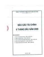 Báo cáo tài chính 6 tháng đầu năm 2009 - Công ty Cổ phần Cơ điện và Xây dựng Việt Nam