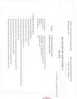 Báo cáo tình hình quản trị công ty - Công ty Cổ phần Kỹ thuật và Ô tô Trường Long