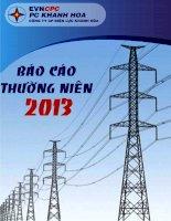 Báo cáo thường niên năm 2013 - Công ty Cổ phần Điện lực Khánh Hòa