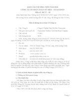 Báo cáo thường niên năm 2010 - Công ty cổ phần Than Núi Béo – Vinacomin