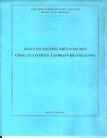 Báo cáo thường niên năm 2015 - Công ty Cổ phần Tập đoàn Hoàng Long