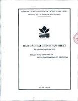 Báo cáo tài chính hợp nhất quý 1 năm 2012 - Công ty cổ phần Giống cây trồng Trung ương