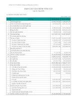 Báo cáo tài chính quý 3 năm 2009 - Công ty Cổ phần Viglacera Hạ Long I