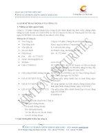 Báo cáo thường niên năm 2007 - Công ty Cổ phần Chứng khoán Kim Long