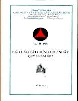 Báo cáo tài chính hợp nhất quý 2 năm 2012 - Công ty Cổ phần Khoáng sản và Vật liệu xây dựng Lâm Đồng