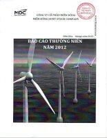 Báo cáo thường niên năm 2012 - Công ty Cổ phần miền Đông