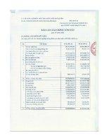 Báo cáo tài chính quý 4 năm 2008 - Công ty Cổ phần Chế biến Thủy sản Xuất khẩu Ngô Quyền
