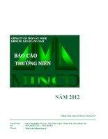 Báo cáo thường niên năm 2012 - Công ty Cổ phần Kỹ nghệ Khoáng sản Quảng Nam