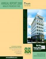 Báo cáo thường niên năm 2008 - Quỹ đầu tư tăng trưởng Manulife