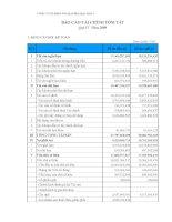 Báo cáo tài chính quý 4 năm 2009 - Công ty Cổ phần Viglacera Hạ Long I