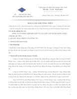 Báo cáo thường niên năm 2011 - Công ty cổ phần Khoáng sản và Vật liệu Xây dựng Hưng Long