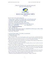 Báo cáo thường niên năm 2007 - Công ty Cổ phần Tập đoàn Thủy sản Minh Phú