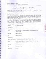Báo cáo tài chính hợp nhất quý 2 năm 2013 (đã soát xét) - Công ty Cổ phần Thương mại Hóc Môn