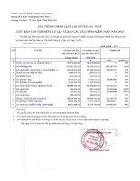 Báo cáo tài chính năm 2015 (đã kiểm toán) - Công ty Cổ phần Bột giặt Net