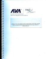 Báo cáo tài chính quý 2 năm 2013 (đã soát xét) - Công ty Cổ phần Xuất nhập khẩu Khoáng sản Hà Nam
