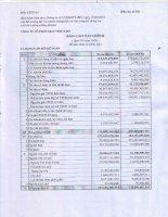 Báo cáo tài chính quý 4 năm 2008 - Công ty Cổ phần Đầu tư và Xây dựng BDC Việt Nam