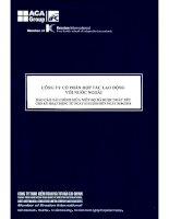 Báo cáo tài chính quý 2 năm 2010 - Công ty Cổ phần Hợp tác Lao động với Nước ngoài