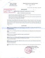 Nghị quyết đại hội cổ đông ngày 09-11-2009 - Công ty Cổ phần Hữu Liên Á Châu