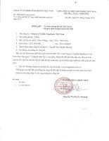 Báo cáo tài chính hợp nhất quý 2 năm 2015 (đã soát xét) - Công ty cổ phần Nagakawa Việt Nam