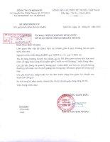 Báo cáo tài chính hợp nhất quý 1 năm 2012 - Công ty Cổ phần Tập đoàn Kido