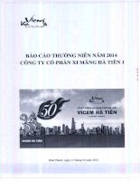 Báo cáo thường niên năm 2013 - Công ty Cổ phần Xi Măng Hà Tiên 1