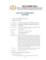 Báo cáo thường niên năm 2008 - Công ty Cổ phần Đầu tư Thương mại Thủy Sản