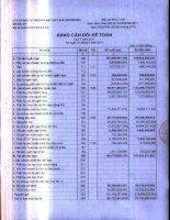 Báo cáo tài chính quý 1 năm 2011 - Công ty Cổ phần Đầu tư Thương mại Thủy Sản
