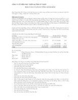 Báo cáo tài chính năm 2011 (đã kiểm toán) - Công ty Cổ phần Phát triển Hạ tầng Kỹ thuật