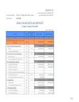 Báo cáo tài chính quý 3 năm 2009 - Công ty Cổ phần Hữu Liên Á Châu