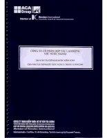 Báo cáo tài chính năm 2009 (đã kiểm toán) - Công ty Cổ phần Hợp tác Lao động với Nước ngoài